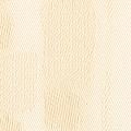 Rembrandt 60002.jpg