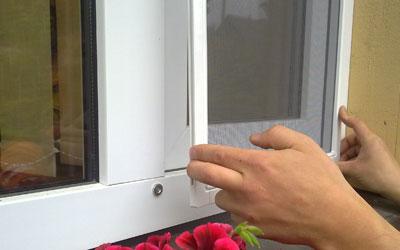 http://kasko-vs.cz/uploads/images/bannery-male-home/b-sitky-hmyz.jpg